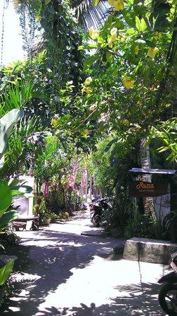 Runa Guesthouse: Entrance