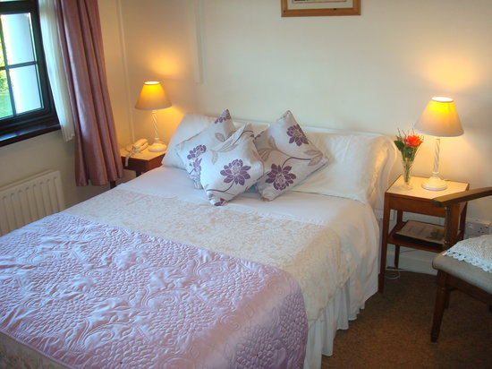 Athlumney Manor B&B: bedroom