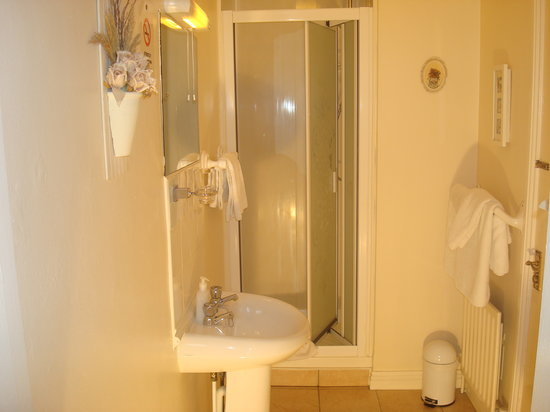 Athlumney Manor B&B: ensuite bathroom