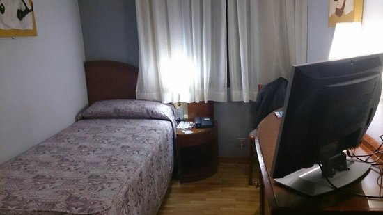 Hotel Rialto: Single room