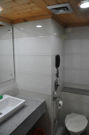Grand Mumtaz Srinagar: Bathroom