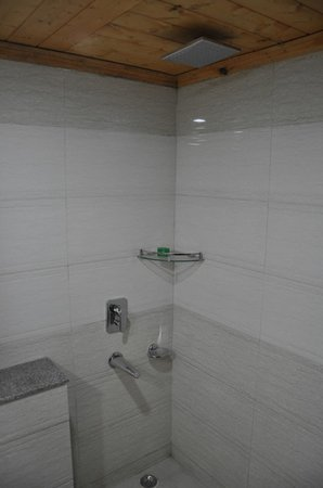 Grand Mumtaz Srinagar: Bathroom 2