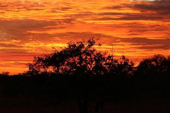 Bullara Station Stay : sunrise in bullara