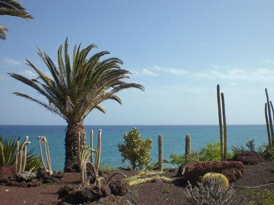 Hotel R2 Pajara Beach Hotel & Spa: vue