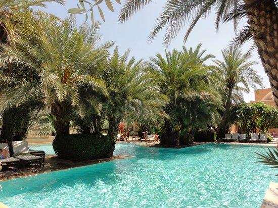 Club Med Marrakech La Palmeraie : Piscine .. magnifique