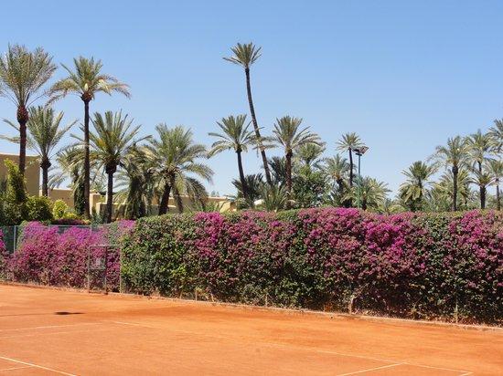 Club Med Marrakech La Palmeraie: Tennis ... cadre incroyable !