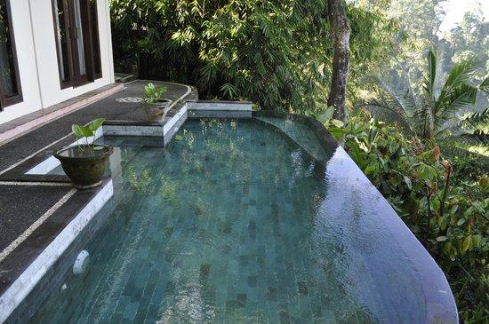 Villa Awang Awang: Villa Melah plunge pool