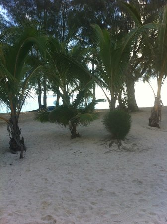 The Rarotongan Beach Resort & Spa : Outside rooms