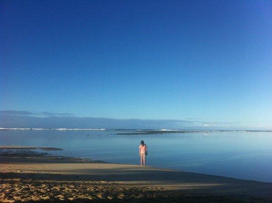 The Rarotongan Beach Resort & Spa : In the lagoon