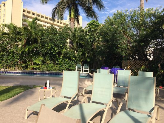 Grand Palm Plaza: Pool area