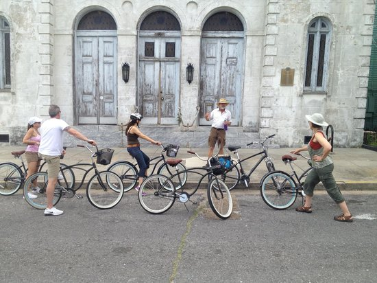 Confederacy of Cruisers Bike Tours: A confederacy of cruisers.