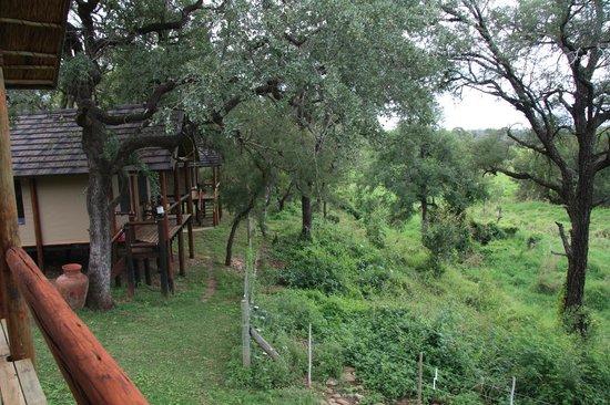 Chisomo Safari Camp: Aussicht zur Seite
