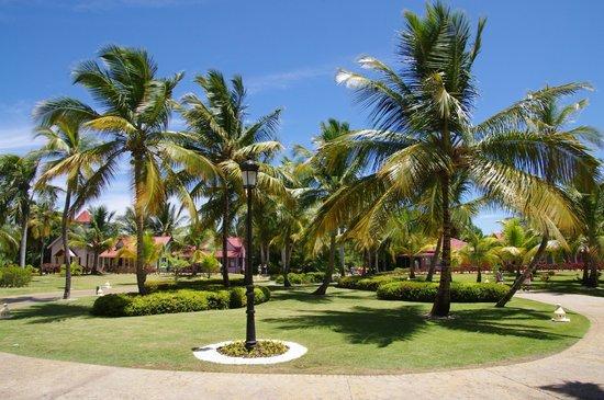 Tropical Princess Beach Resort & Spa: Les jardins vu de l'accueil