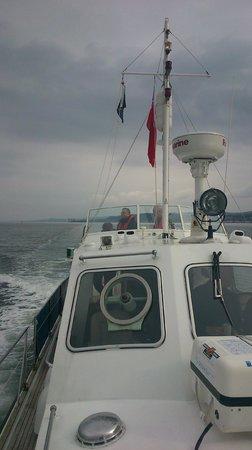 Seatrek Marine Services : Sunday sailing