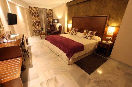 Hotel Balcon de Europa: Room