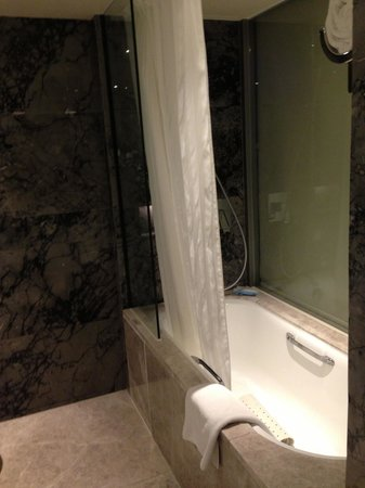 Royal Plaza Hotel: Bathroom.. Forgot to mention that the shower screen has a funny smell. Perhaps it should be chan