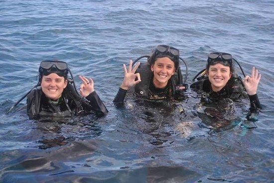 Los Mantas Dive Center: Buceo Discovery!!! 14 metros abajo
