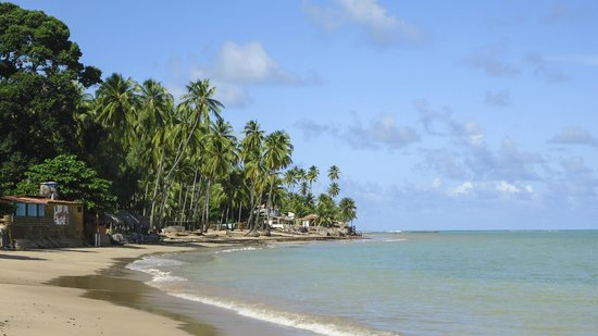 Japaratinga Beach : Praia de Bicas