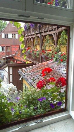 Hezelhof Hotel: Blick aus dem Zimmer
