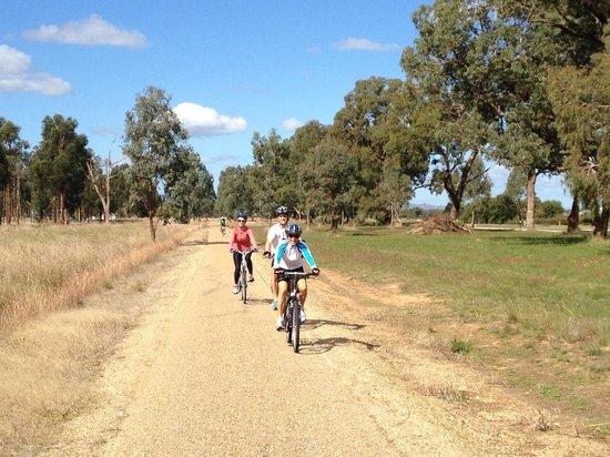 Murray to Mountains Rail Trail: Near wangaratta