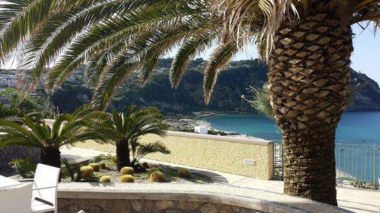 Hotel Terme Royal Palm : Veduta dai terrazzi dell'hotel Royal Palm sulla baia di Citara.