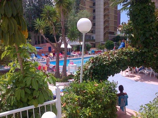 Hotel Magic Villa de Benidorm: Gardens
