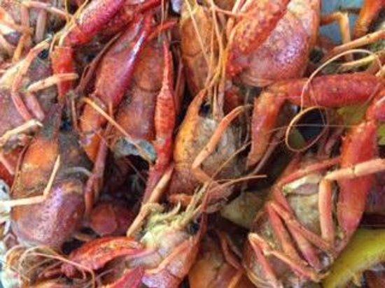 Crawfish Hole #2 Steak & Seafood Restaurant: 5 pounds of crawish down!