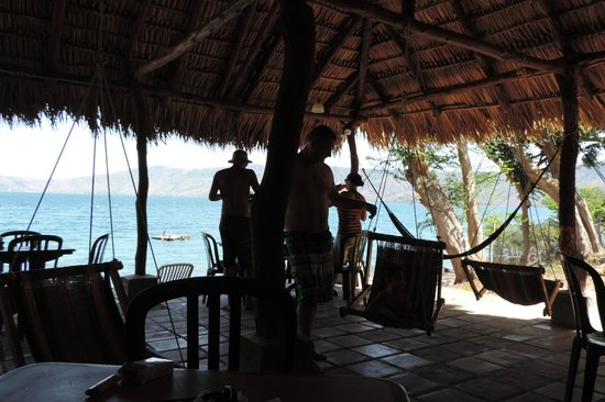 Paradiso Hostel: bar with lots of hammock chairs!