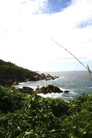 Campeche island: Lado leste da ilha