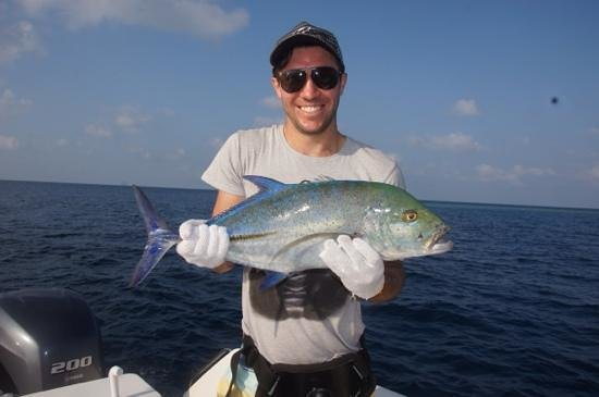 Jack fish picture of maakeyolhu fishing charters male for What is a jack fish