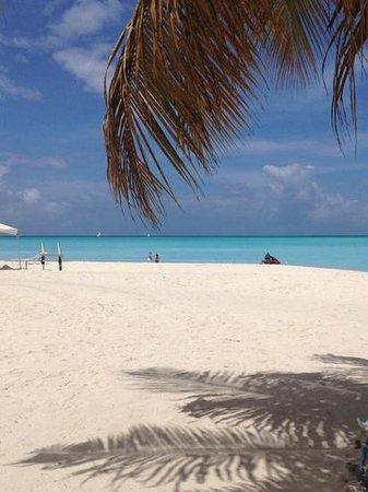 Jolly Beach Resort & Spa: Amazing beach!