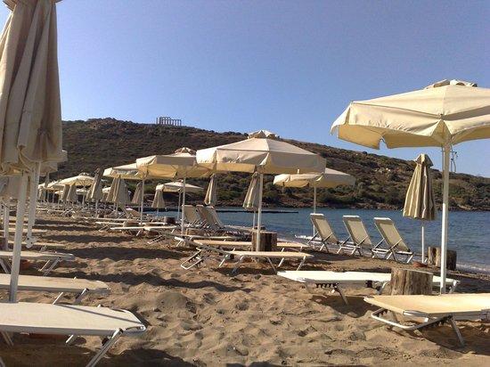 Aegeon Beach Hotel: Χώρος παραλίας