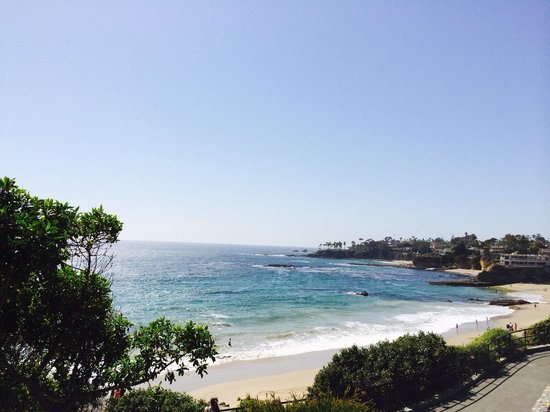 Holiday Inn Laguna Beach : Ocean