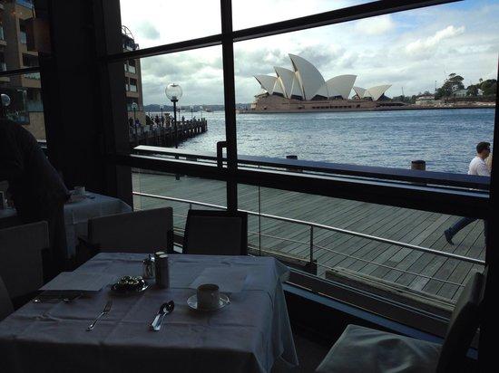 Park Hyatt Sydney: View at the main restaurant