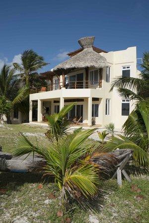 Casa Caracola : ocean-facing side of house