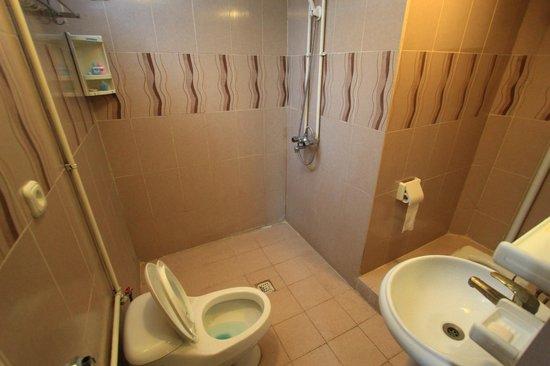 Golestan Hotel: Bathroom