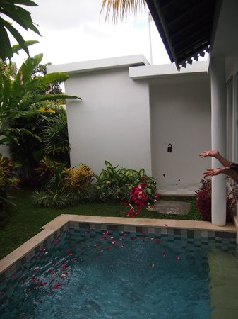 Astana Batubelig Villas : You can jump into the pool straight from your room :)