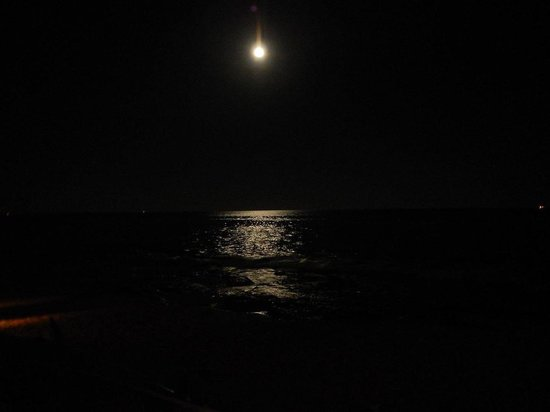 Fusion Bar & Restaurant: Beautiful view of moon over the ocean