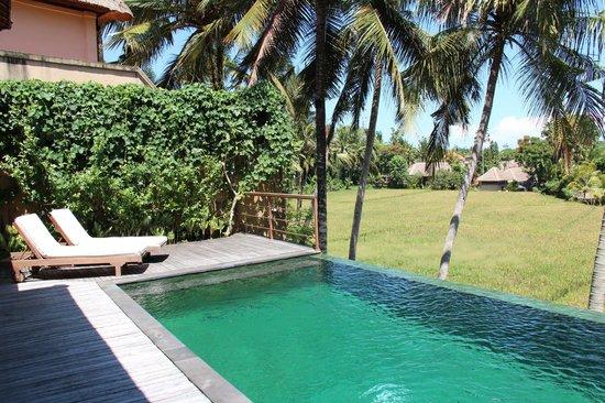 Motama Villa: unser Poolbereich