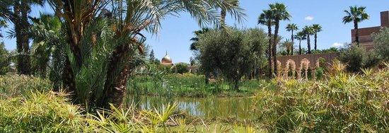 Palais Namaskar: jardins