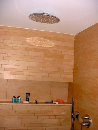 Barcelo Bavaro Palace Deluxe: Rain shower in the shower room