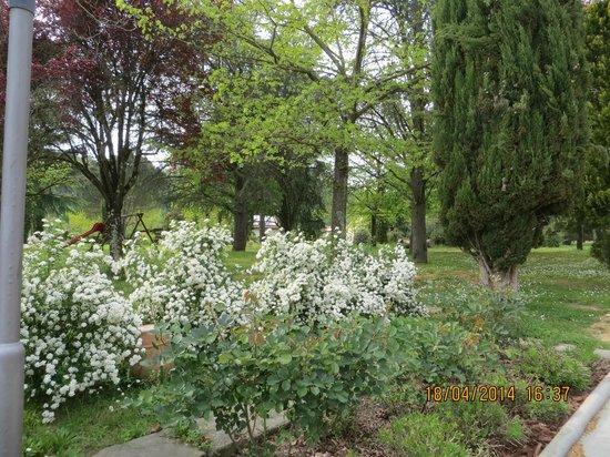 Villa Rigacci: Un angolo del giardino