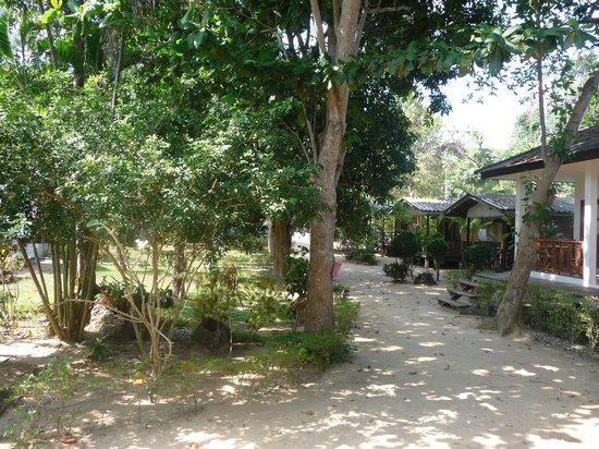 The Cottage@Samui: cottage