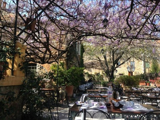 Trattoria Osenna : Sitting under the Wisteria