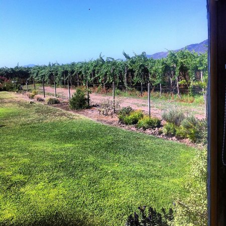Hotel Vino Bello: Room' view