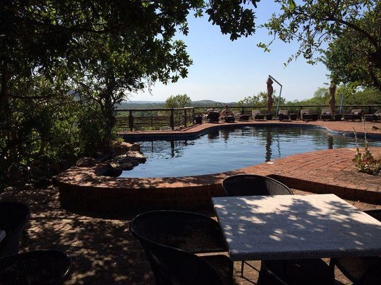 andBeyond Phinda Mountain Lodge : Shared pool with spectacular view