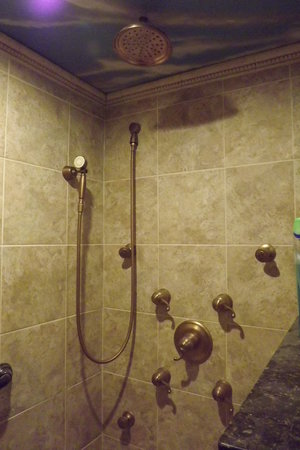 X  Shower With  Jets To Rain Shower Heads And Wand With - Rain shower head with wand