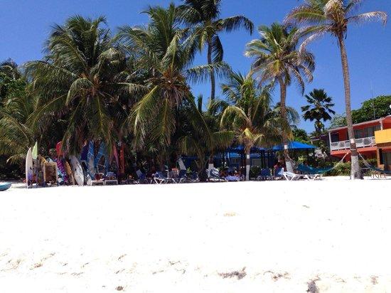 Cocoplum Beach Hotel: Cocoplun