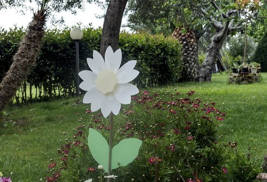 Armonia B&B : Un particolare del giardino.