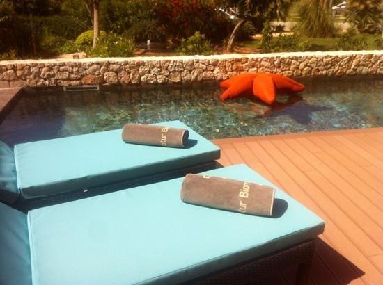 Protur Biomar Gran Hotel & Spa: junior suite swim up